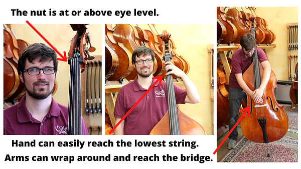 Bass sizing pictures (2).png