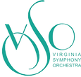 VSO-teal-vector-square-logo_edited.png