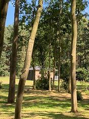 Riverside cabin in woods.jpg