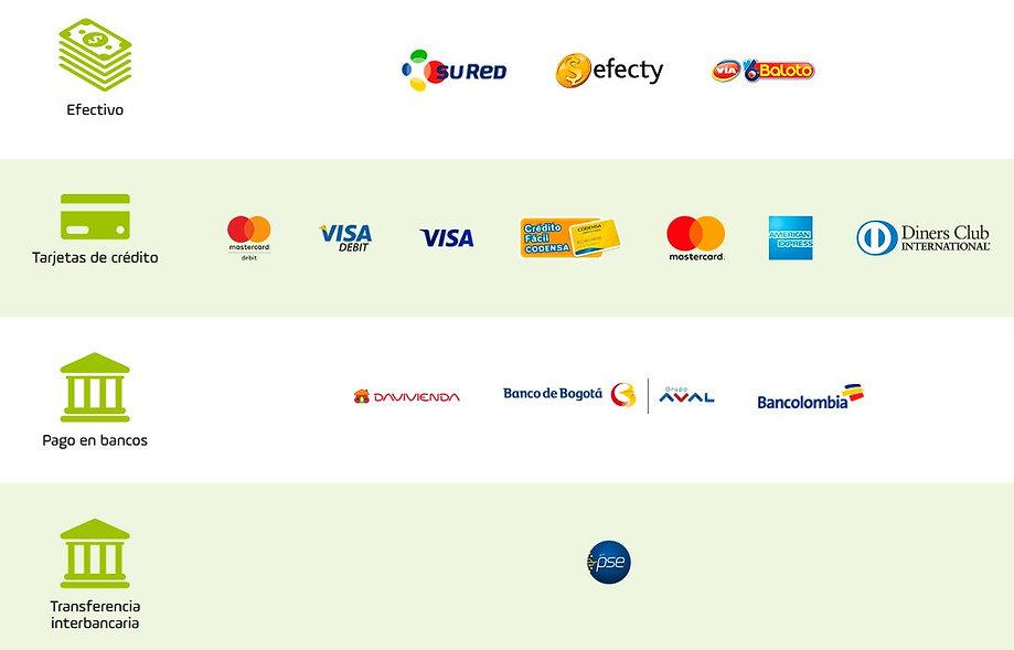 Opciones-de-pago-PayU.JPG