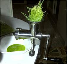 Máquina para extraer el zumo del pasto de Trigo
