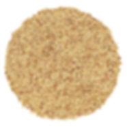 Semillas de Alfalfa.jpg