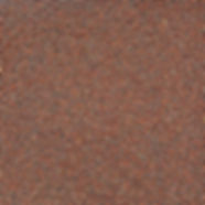Semillas-de-brocoli.jpg