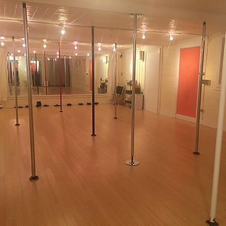 A room full of poles will always make me