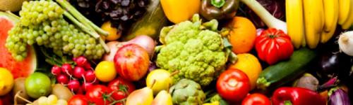 vegetarian restaurants in gainesville