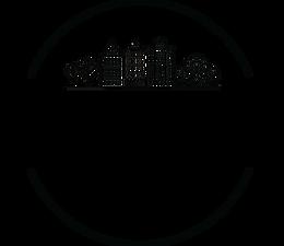 Suwanee Soiree Logo 2020.png