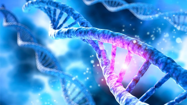exploiting-genetics-to-improve-cancer-diagnosis-and-treatment-348517.jpg