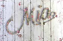 Name Art_ Mia