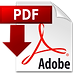 pdf-icon-copy-min.png