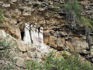 Альпаки и саркофаги в Перу
