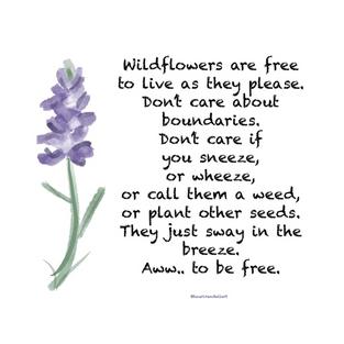 """Wildflowers are Free"""