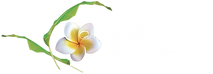 Logo NSB Hotel blanc.png