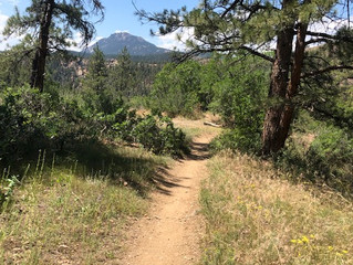 Embarking on the Colorado Trail!