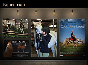 equestrian.jpg