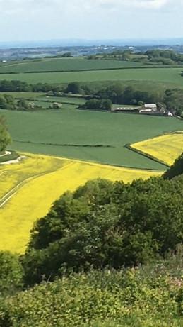 Farm & Valley View