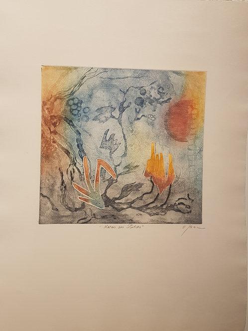 """Lithographie originale de Osanne """" Marais aux Pluvieux """""""