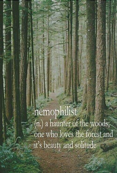 nemophilist.JPG