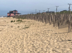 Sand Fence, Kitty Hawk, NC