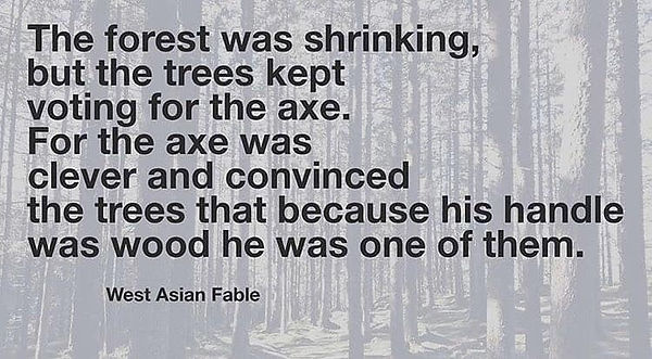 The Trees and the axe.JPG