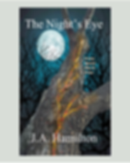 The Night's Eye