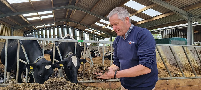Inspecting dry cow ration.jpg