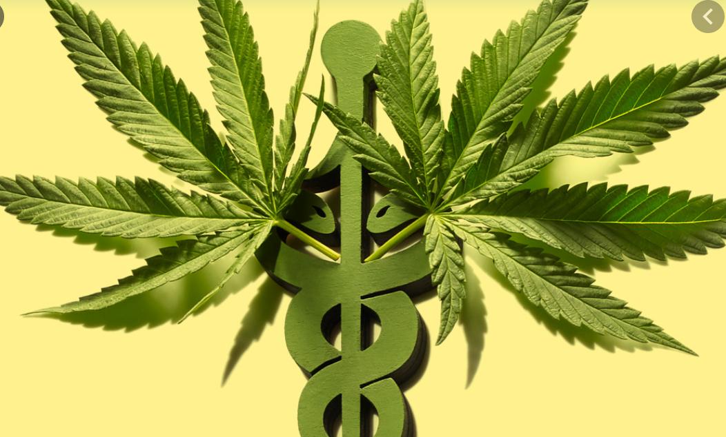 Medical Cannabis Eval (initial)