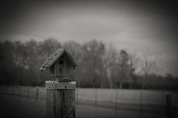 Birdhouse - Middleton, TN - 2014