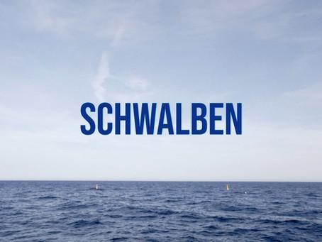 Neue Single: Schwalben