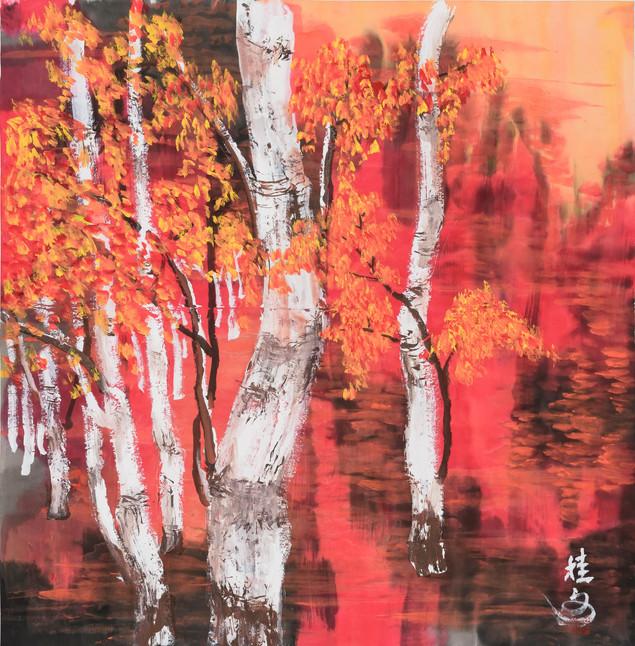 白樺 White Birch 69 x 69 cm
