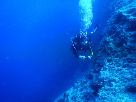 Padi Deep Dive