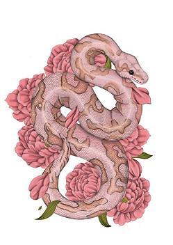 snake1-2.jpg