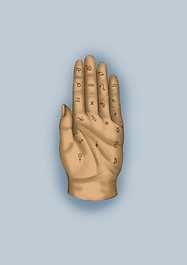 palmistry.jpg