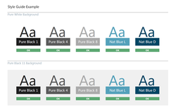 Branded UI Style Guide