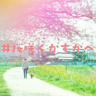 #桜咲くかすかべサイトアイコン.jpg
