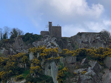 Callout 32 - 20th May 2021 - Dalkey Quarry.