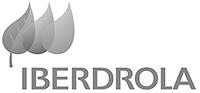 Iberdrola-Logo-300x299_edited.png