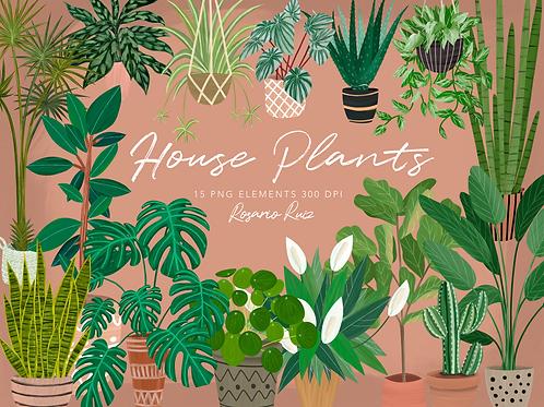 House Plants Clipart, Indoor Plants Planner Elements, Hand Painting, Cactus