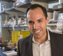 Luis M. Campos, Ph.D