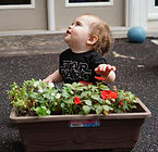 Child playing with flowers