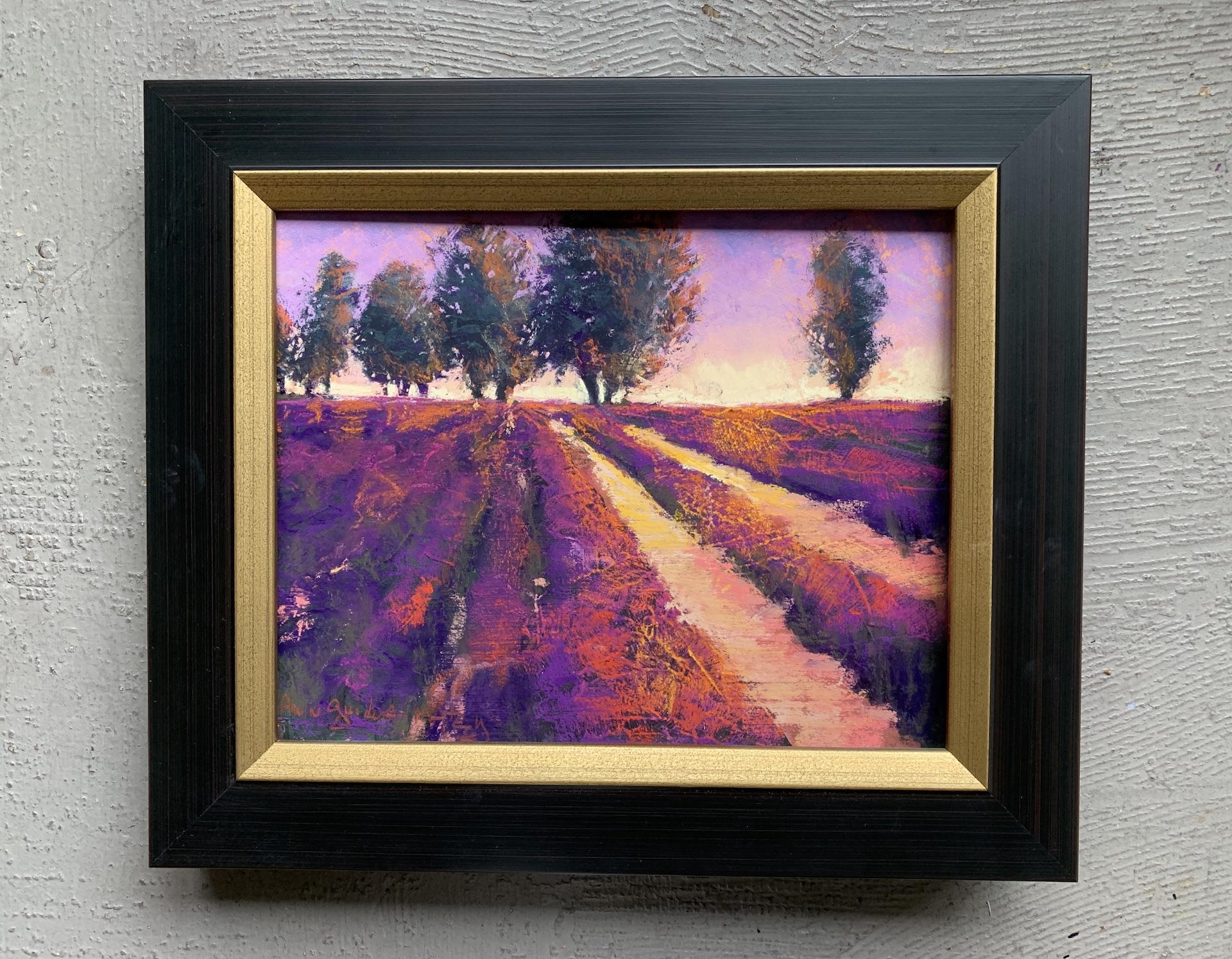 Lavender @ Sunset