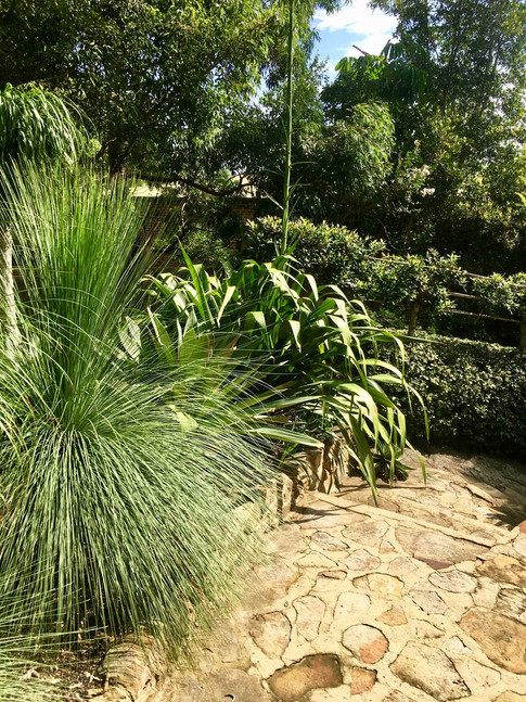 Bouddi Landscaping Killcare