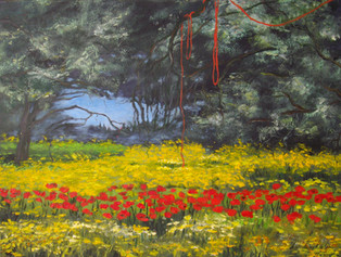 THE PEACEFUL NARRATION OF A POPPY, 10