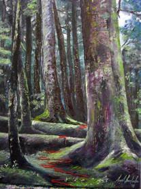 OPERA OF THE TREES