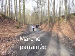 marchewix.jpg