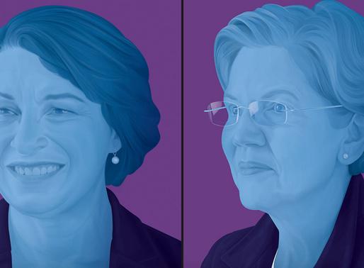The Fluke News endorses Klobuchar and Warren for YT