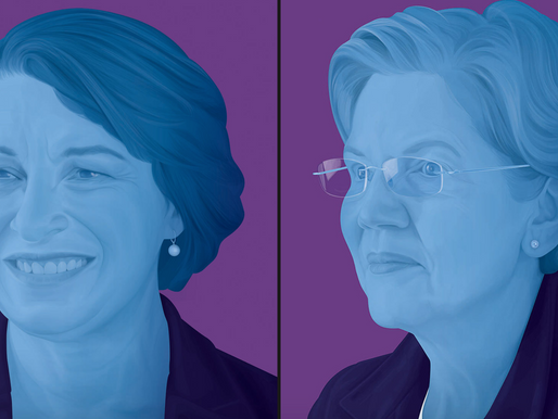 The Fluke News endorses Klobuchar and Warren for YT