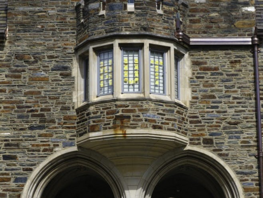 Report: Over 20% of deforestation caused by Duke students writing with Post-It Notes on windows
