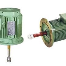 hidustan-cooling-tower-motor.jpg