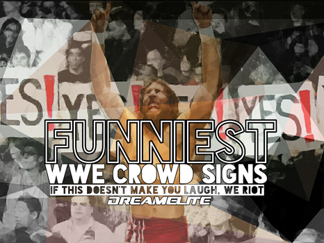 Funniest WWE Crowd Signs