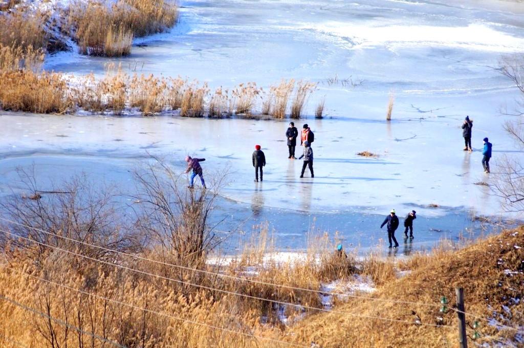 Ушаковский пруд
